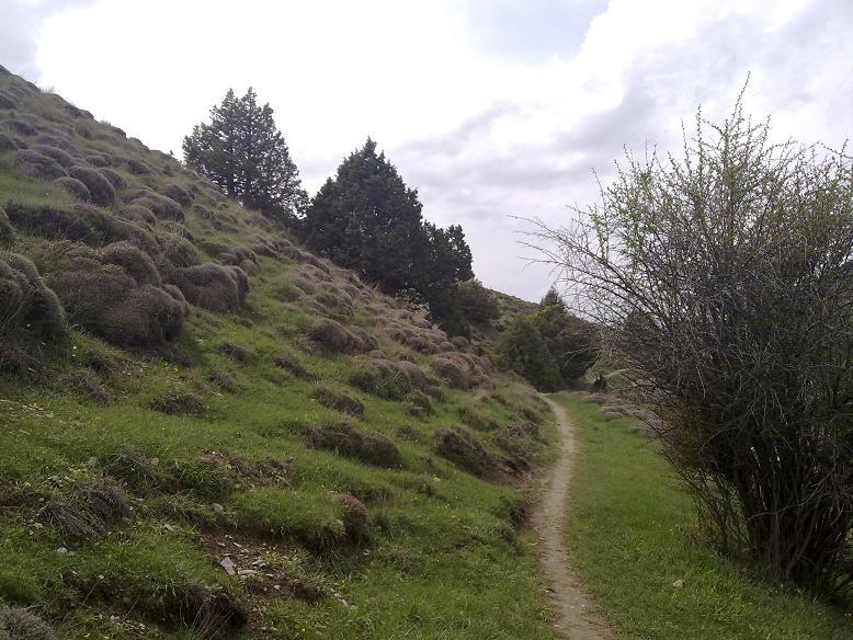 منطقه حفاظت شده گولیل (گلیل) و سرانی شیروان - Golil  and Sarrani around Shirvan