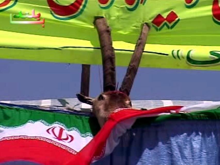 موسیقی مقامی شمال خراسان و کردستان من